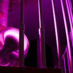 Inred hemmet med ljus med en magisk lampa som skapar levande färger
