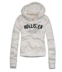 Hoolister Hoodie