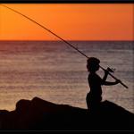 Köpa fiskespö? Det finns billiga fiskespön och annan fiskeutrustning online