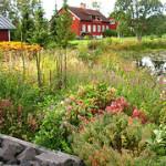 Sommarmarknader i Sverige 2019 – Marknad i Ockelbo, Överkalix, Kivik och Nordmalings